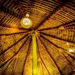 Mango-inside-Palapa